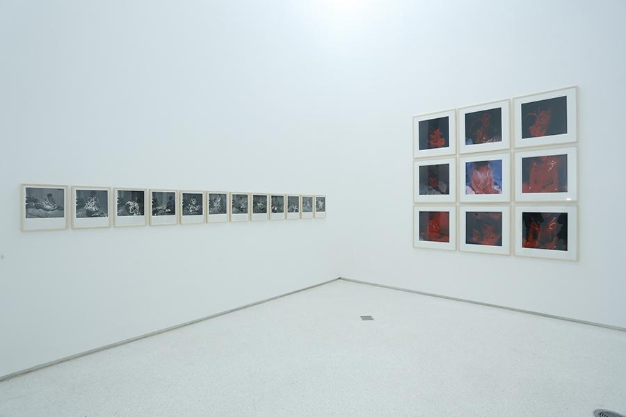 2012 art work cover 21