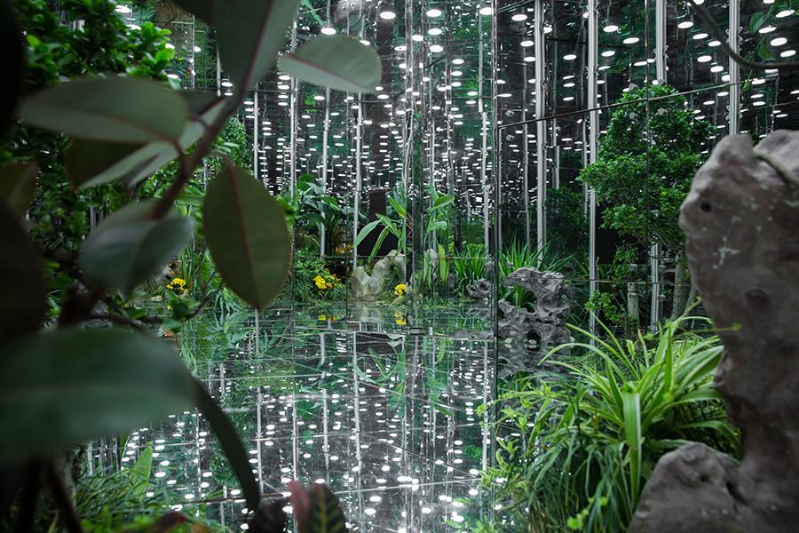 Noah's-Garden-art-work-10