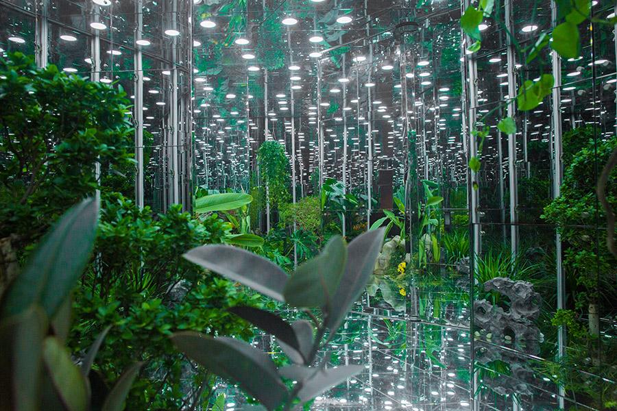 Noah's-Garden-art-work-11