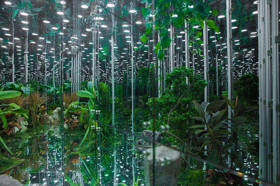 Noah's-Garden-art-work-12