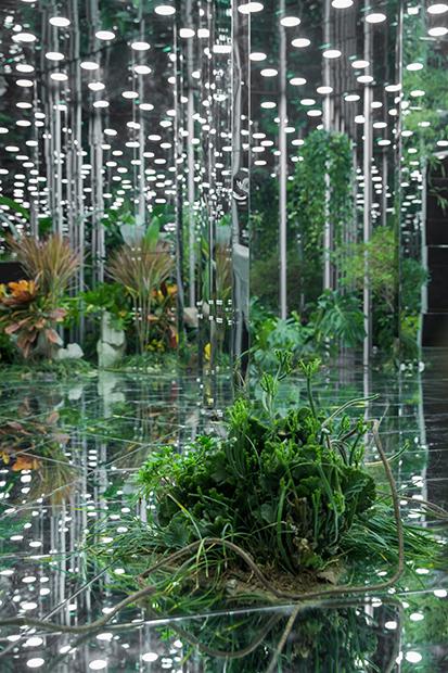 Noah's-Garden-art-work-13