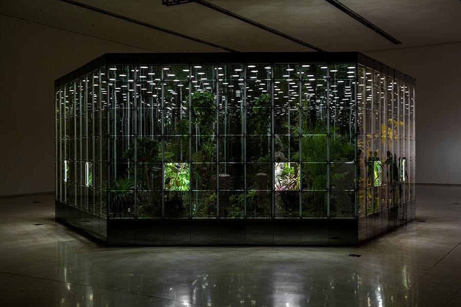 Noah's-Garden-art-work-5