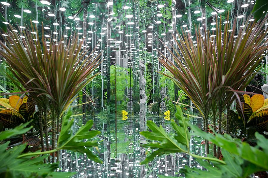 Noah's-Garden-art-work-7