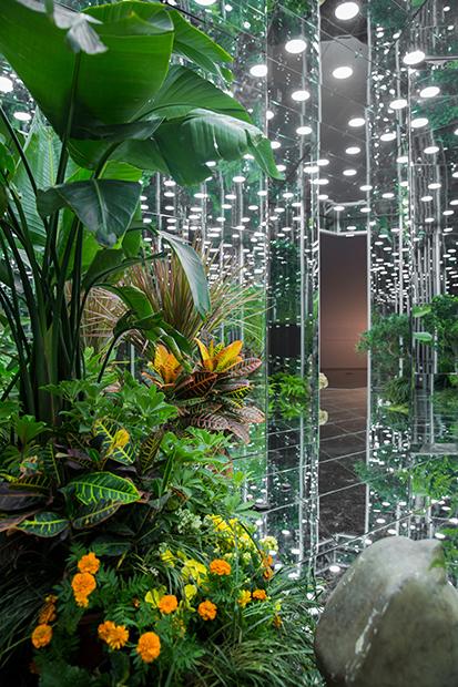 Noah's-Garden-art-work-8