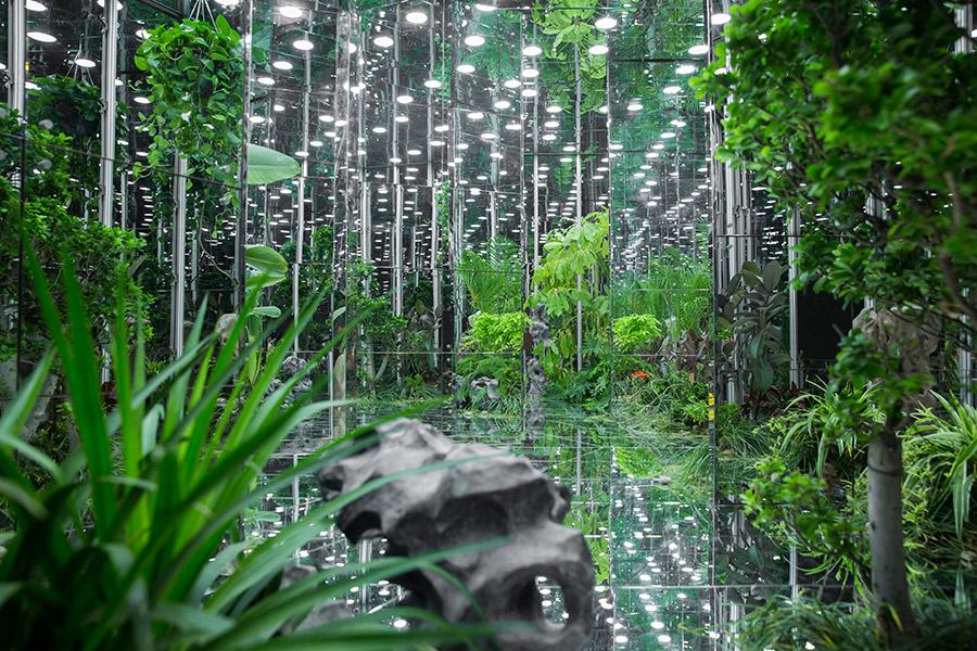 Noah's-Garden-art-work-9